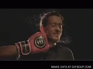 Watch punch in the face GIF on Gfycat. Discover more related GIFs on Gfycat