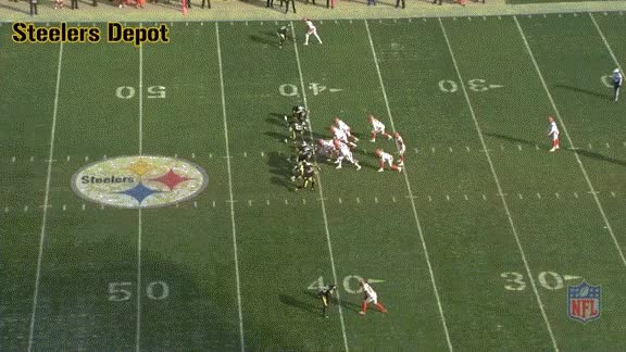 Watch and share Punt-browns-2 GIFs on Gfycat