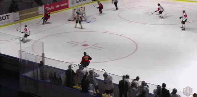 Watch and share Vejdemo Assis In CHL GIFs by zeb on Gfycat