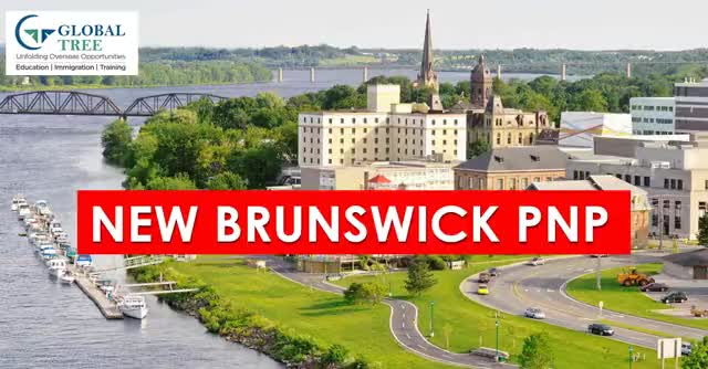 Watch and share New Brunswick Pnp GIFs and Nbpnp GIFs by Study Abroad & Immigration on Gfycat