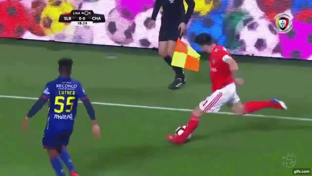 Watch and share Soccer GIFs and Chad GIFs on Gfycat