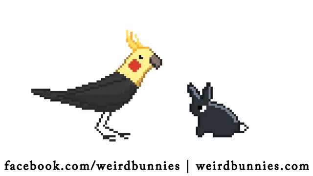 Watch and share Animation GIFs and Cockatiel GIFs by Weird Bunnies on Gfycat