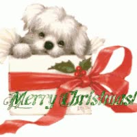 Watch and share Merry Christmas Puppy GIFs on Gfycat