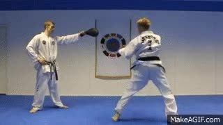 Watch Tae kwon GIF on Gfycat. Discover more related GIFs on Gfycat