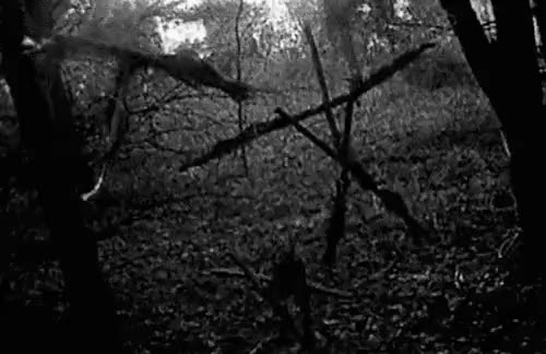 Watch The Blair Witch Project (1999) GIF on Gfycat. Discover more black and white, black and white gif, creepy, dark, darkness, horror, horror movie, macabre, ritual, satan, satanic, scary, spooky, symbol, the blair witch project GIFs on Gfycat