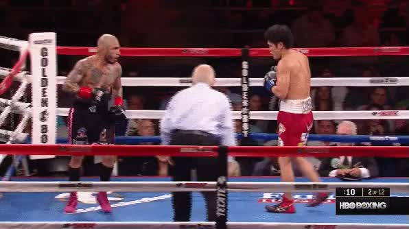 Watch Cotto 6 GIF on Gfycat. Discover more related GIFs on Gfycat