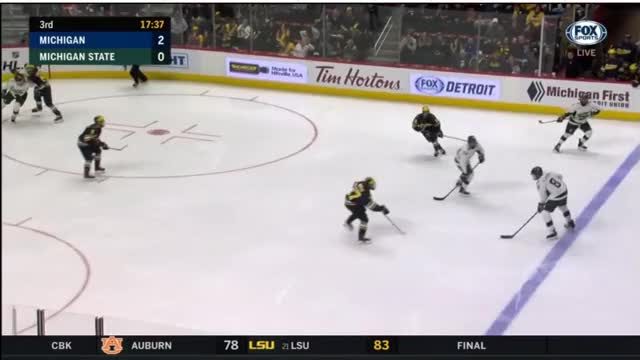 Watch and share Hockey GIFs by aschnepp on Gfycat