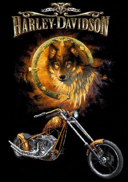 Watch and share Splendid Harley Davidson animated stickers on Gfycat