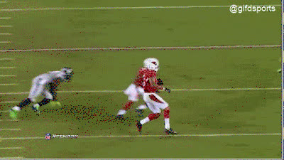 Arizona Cardinals GIFs