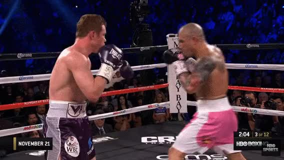 Watch Canelo 1 GIF on Gfycat. Discover more related GIFs on Gfycat