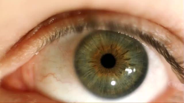 Watch IrisWiggle GIF by @laserpilot on Gfycat. Discover more gifs, iris, slow motion GIFs on Gfycat