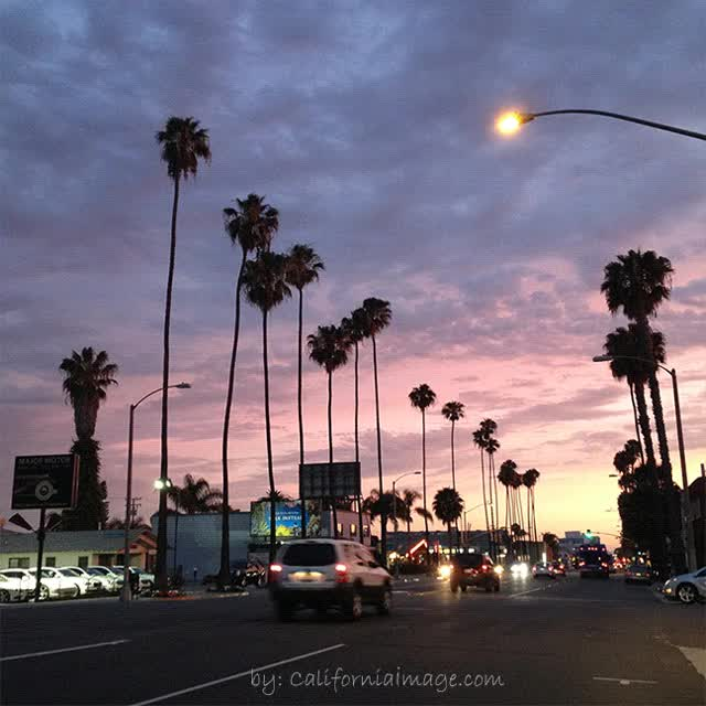 Watch and share Hollywood California GIFs on Gfycat