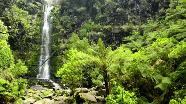 🎧 Waterfall & Rainforest Ambient Sound - Relaxing Forest, Jungle