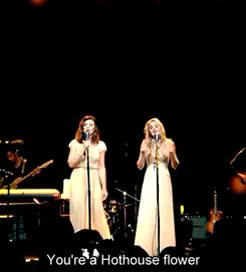Watch Gramercy Theatre July 9th (x) GIF on Gfycat. Discover more 78Violet, AJ Michalka, Aly Michalka, Hothouse, ✾✾ GIFs on Gfycat