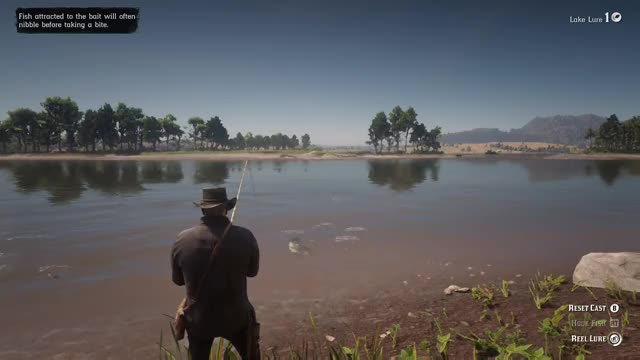 Watch this GIF by Gamer DVR (@xboxdvr) on Gfycat. Discover more RedDeadRedemption2, Rednartso, xbox, xbox dvr, xbox one GIFs on Gfycat