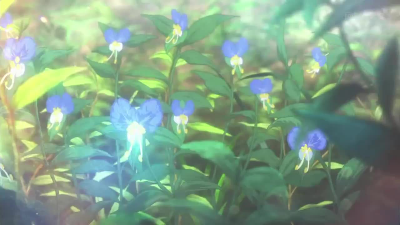 Violet Evergarden Episode 2 - Flowers!!! GIFs