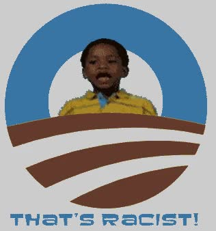 Watch That's Racist | That's Racist! GIF on Gfycat. Discover more related GIFs on Gfycat