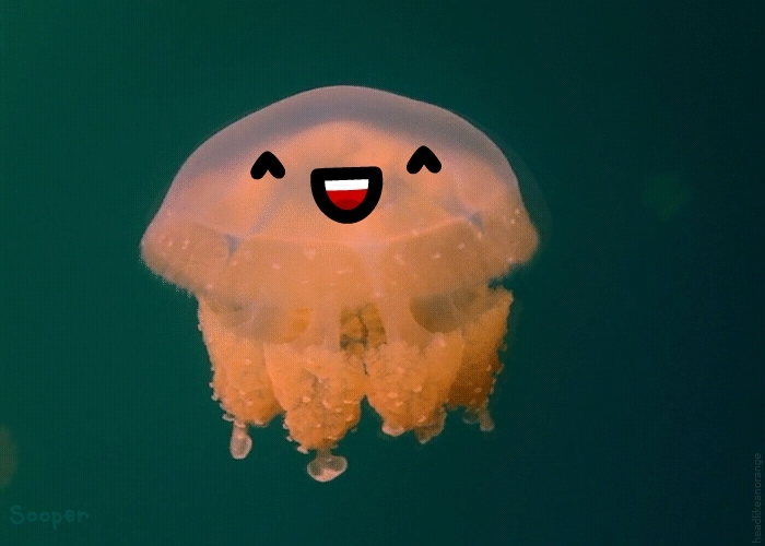 friendly jellyfish • r/reallifedoodles GIFs
