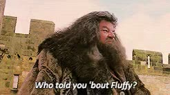 Watch and share Rubeus Hagrid GIFs and Hagrid Feels GIFs on Gfycat