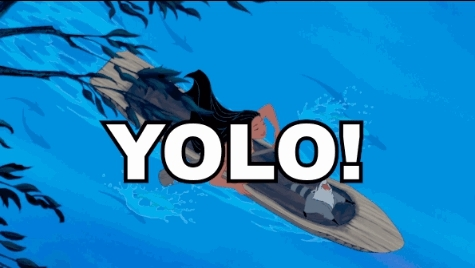 gohard, i regret nothing, yolo, you only live once, YOLO - You Only Live Once GIFs