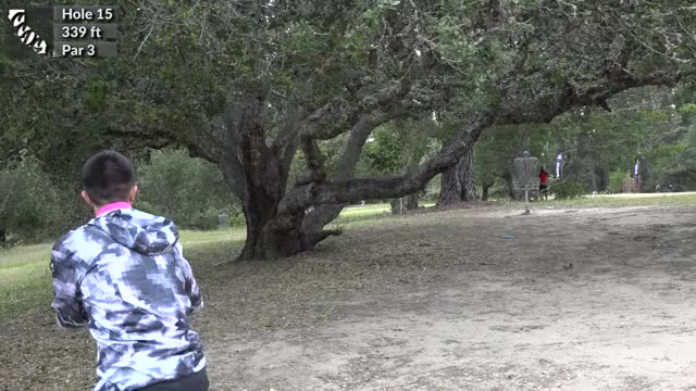 Watch 2016 - Masters Cup - Round 2 - Hole 15 - Paul McBeth big putt through the tree, 50ft GIF by @rprodart on Gfycat. Discover more disc, disc golf, open GIFs on Gfycat