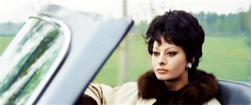 diva, driving, fabulous, glam, glamorous, sophia loren, Sophia Loren Glamorous Driving GIFs