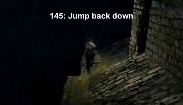Watch and share The Dumbshits Guide To Dark Souls: New Londo Ruins GIFs on Gfycat