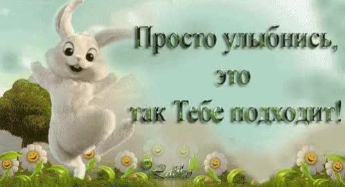 Watch and share Улыбка Заяц Зайчик Улыбнись Радость GIFs on Gfycat