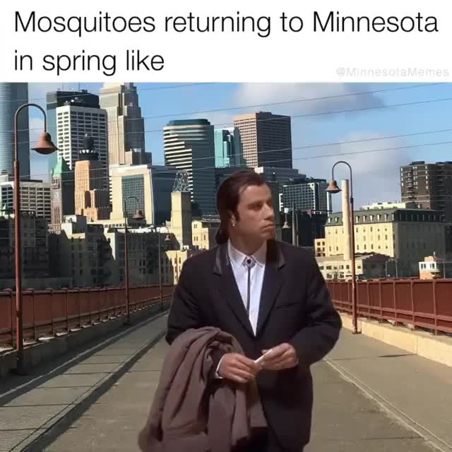 Watch and share Minnesotamemes~1585427008~2275048621061661873 6042624076 GIFs on Gfycat