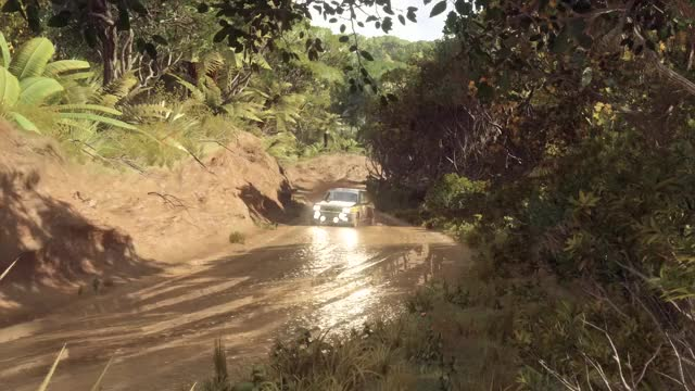 Watch Dirt Rally 2 Mud GIF by Felipe Seixas (@czar66) on Gfycat. Discover more related GIFs on Gfycat