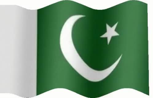 Watch and share Pakistan GIFs on Gfycat
