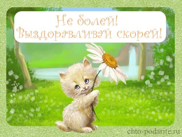 Watch and share Ne Boley Vyzdoravlivay Skorey GIFs on Gfycat
