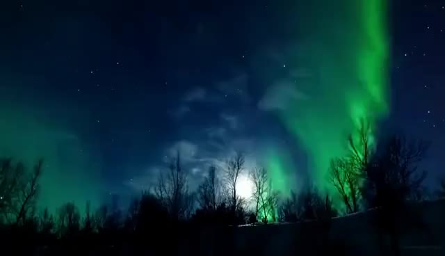 Watch aurora GIF on Gfycat. Discover more aurora, boreal GIFs on Gfycat