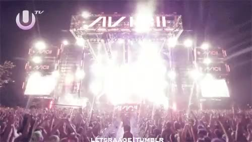 Watch and share Edm Gif GIFs and Avicii GIFs on Gfycat