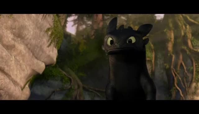 httyd, toothless GIFs