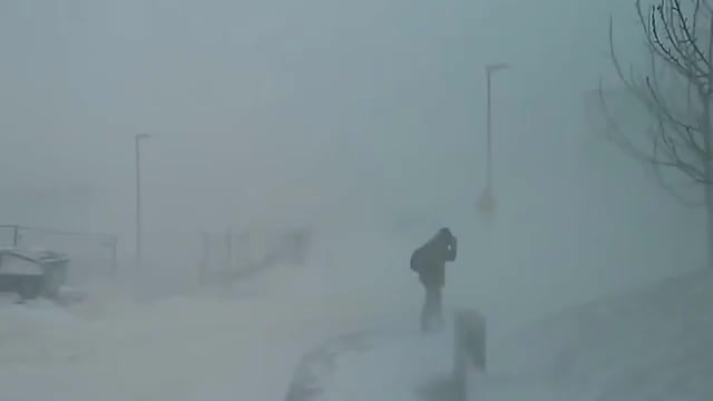Watch Snow storm in Iceland GIF on Gfycat. Discover more iceland, snowstorm GIFs on Gfycat