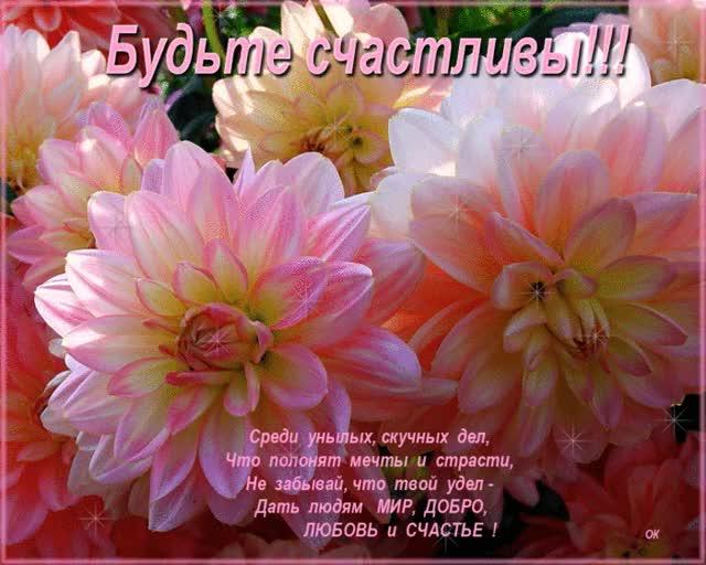 Watch and share Счастье GIFs on Gfycat