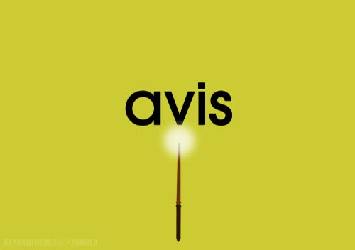 Watch and share Avis GIFs on Gfycat