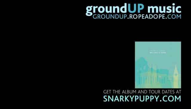 Snarky Puppy - Outlier (We Like It Here) GIFs