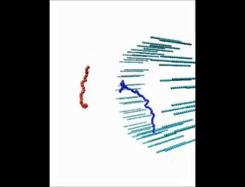 Watch and share Sim GIFs on Gfycat