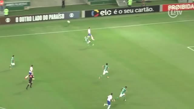 Watch and share Cobertura GIFs and Palmeiras GIFs on Gfycat