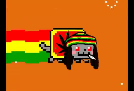 Watch and share Nyan Cat GIFs on Gfycat