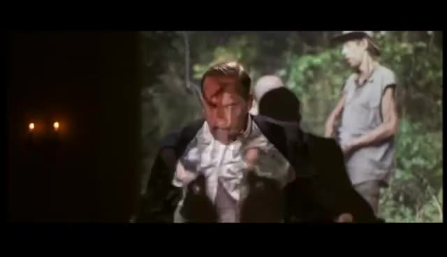 Watch and share Ace Ventura High Ho Silver GIFs on Gfycat