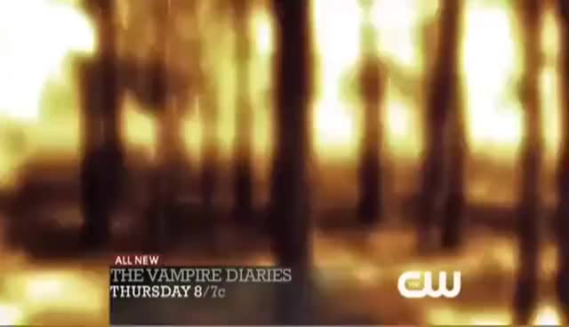 Watch the vampire diaries 2x11 GIF on Gfycat. Discover more 2x11, diaries, the, vampire GIFs on Gfycat