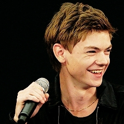 dylan o'brien, dylmas, game of thrones, isabella melling, love actually, newtmas, sangster, sangster gangster, teen wolf, the maze is a code, the maze runner, the sorch trials, thomas, thomas brodie-sangster, thomas sangster, tmr, tst, aww GIFs