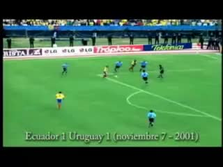 Watch ecuador GIF on Gfycat. Discover more ecuador GIFs on Gfycat