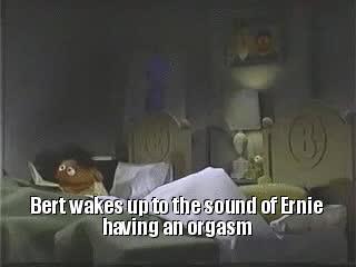 Ernie's been reading erotic fan fiction.  | Bertstrips GIFs