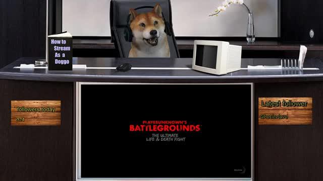 -~ Doggo ~-