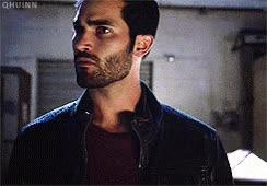 Watch Сарказм GIF on Gfycat. Discover more tyler hoechlin GIFs on Gfycat