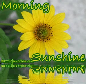 Watch I want to share this Yellow Morning Sunshine Goodmorning picture from Dazzle Junction with you.  Click to view. GIF on Gfycat. Discover more related GIFs on Gfycat